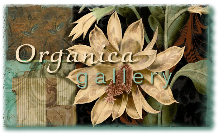 organica gallery all things natural with an eye toward fine home decor