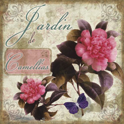 Jardin De Camellias