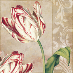 Peppermint Tulips I
